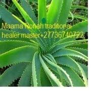 African Traditional Healer & Voodoo Spells +27736740722