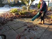 Bosh leaf blower