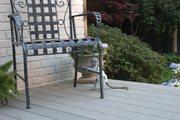 SAJS Pairs Capuchin pygmy marmoset available 07031956739