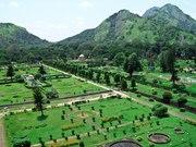 BigWig Tourism   South India Tour Packages   Kerala   Tamilnadu   Holi
