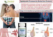 Herbal Treatment for Epididymitis